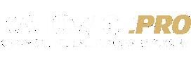 KATOWICE.PRO
